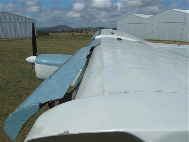 pegastol wing
